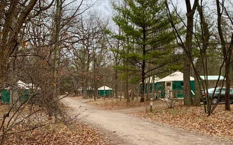 multiple yurts in a campground